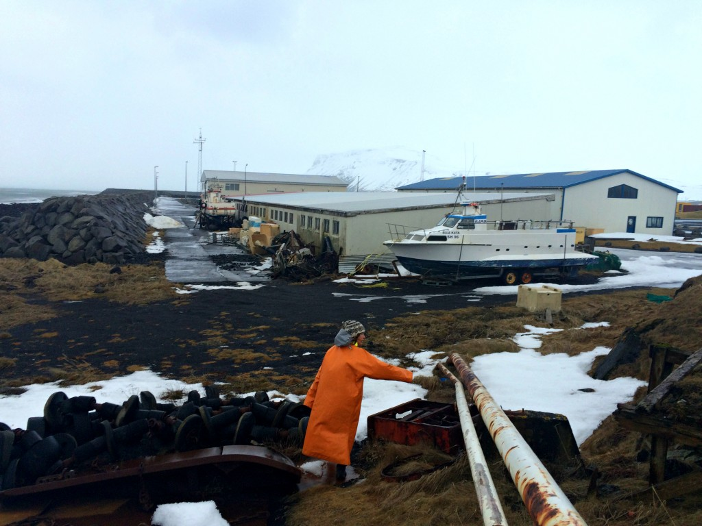 Rif in the storm, fish processing plants, sea wall